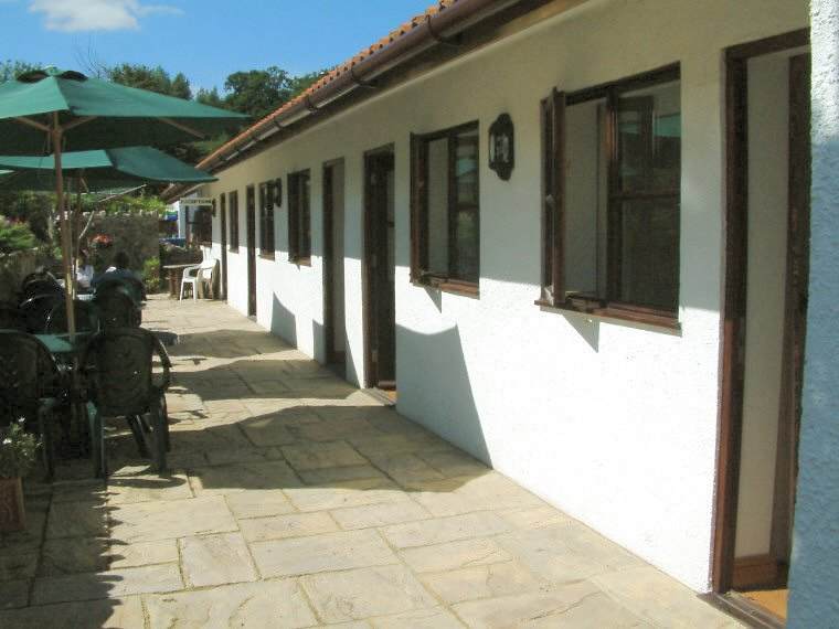 This is the patio area, where you can sit in comfort and enjoy our garden. Cream teas are also served in the summer.
